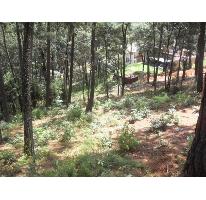 Foto de terreno habitacional en venta en  nonumber, valle de bravo, valle de bravo, méxico, 2218140 No. 01