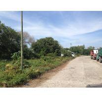 Foto de terreno habitacional en venta en  , nuevo ixtapa, puerto vallarta, jalisco, 2825471 No. 01