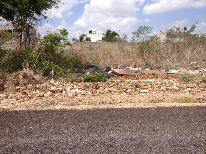 Propiedad similar 2122120 en Nuevo Yucatán.