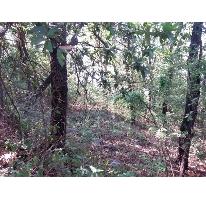 Foto de terreno habitacional en venta en  , olinalá, san pedro garza garcía, nuevo león, 1270161 No. 01