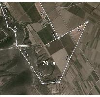 Foto de rancho en venta en  , palmar de bravo, palmar de bravo, puebla, 1379077 No. 01