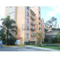 Foto de departamento en venta en palmira , palmira tinguindin, cuernavaca, morelos, 1841646 No. 01