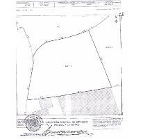 Foto de terreno habitacional en venta en  , palmira tinguindin, cuernavaca, morelos, 2368093 No. 01