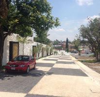 Foto de terreno habitacional en venta en  , palmira tinguindin, cuernavaca, morelos, 2592111 No. 01