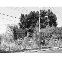 Foto de terreno habitacional en venta en  , palmira tinguindin, cuernavaca, morelos, 2637019 No. 01