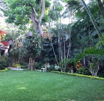 Foto de casa en venta en  , palmira tinguindin, cuernavaca, morelos, 4031087 No. 03