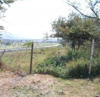 Foto de terreno habitacional en venta en , palo escrito, emiliano zapata, morelos, 2117958 no 01