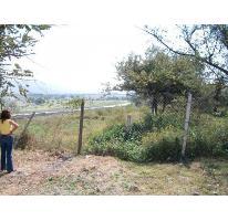 Foto de terreno habitacional en venta en . ., palo escrito, emiliano zapata, morelos, 2117958 No. 01