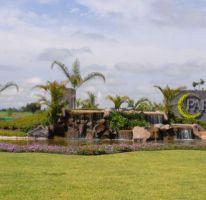 Foto de terreno habitacional en venta en, paraíso country club, emiliano zapata, morelos, 1056485 no 01