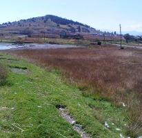 Foto de terreno habitacional en venta en paraje de canoas , nueva serratón, zinacantepec, méxico, 4040042 No. 01