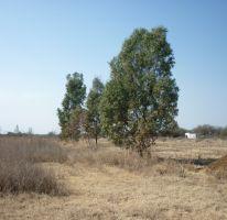 Foto de terreno habitacional en renta en parcela 51 z1 p12 sn, panamericano, san francisco de los romo, aguascalientes, 1957906 no 01