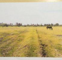 Foto de terreno habitacional en venta en parcela, venustiano carranza, venustiano carranza, michoacán de ocampo, 2197702 no 01