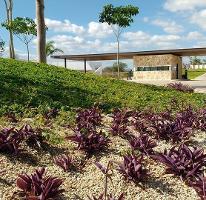 Foto de terreno habitacional en venta en parque central , cholul, mérida, yucatán, 0 No. 01