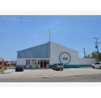 Foto de nave industrial en venta en  , parque industrial, la paz, baja california sur, 1304323 No. 01