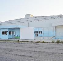 Foto de nave industrial en renta en  , parque industrial, la paz, baja california sur, 2638956 No. 01