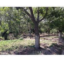 Foto de rancho en venta en  , parras de la fuente centro, parras, coahuila de zaragoza, 2704667 No. 01