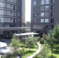 Foto de departamento en renta en, paseo de las lomas, álvaro obregón, df, 2204826 no 01