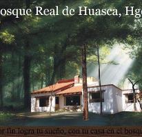 Foto de terreno habitacional en venta en paseo del conde 100, bosque real, huasca de ocampo, hidalgo, 3252019 No. 01