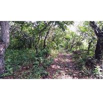 Foto de terreno comercial en venta en  , paso del toro, medellín, veracruz de ignacio de la llave, 2644737 No. 01