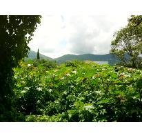 Foto de terreno habitacional en venta en  , pedregal de las fuentes, jiutepec, morelos, 384811 No. 01