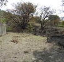 Foto de terreno habitacional en venta en pegado al bosque primavera , bosques de santa anita, tlajomulco de zúñiga, jalisco, 0 No. 01