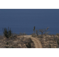 Foto de terreno habitacional en venta en, pescadero, la paz, baja california sur, 1117119 no 01