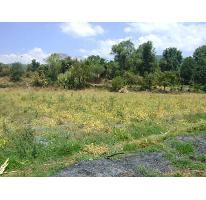 Foto de terreno habitacional en venta en  , pipioltepec, valle de bravo, méxico, 2731144 No. 01