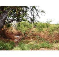 Foto de terreno habitacional en venta en  , plan de ayala, cuautla, morelos, 1574324 No. 01