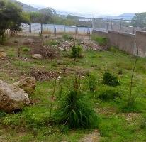 Foto de terreno habitacional en venta en  , plan de ayala, tuxtla gutiérrez, chiapas, 3336391 No. 01