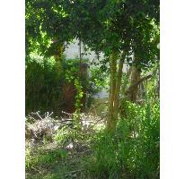 Foto de terreno habitacional en venta en, playa car fase ii, solidaridad, quintana roo, 1043727 no 01