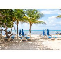 Foto de departamento en venta en  , playa del carmen centro, solidaridad, quintana roo, 1157931 No. 01