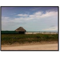 Foto de terreno habitacional en venta en  , playa norte, carmen, campeche, 2350894 No. 02