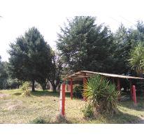 Foto de terreno habitacional en venta en  , popo park, atlautla, méxico, 2003138 No. 01