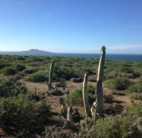 Foto de terreno habitacional en venta en  , popular san quintín, ensenada, baja california, 2868601 No. 01