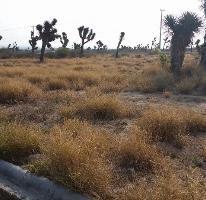Foto de terreno habitacional en venta en  , portal de zuazua, general zuazua, nuevo león, 3696533 No. 01