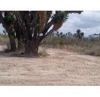 Foto de terreno habitacional en venta en  , portal del norte, general zuazua, nuevo león, 2119418 No. 01