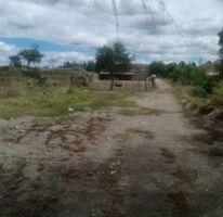 Foto de terreno habitacional en venta en predio el guamuchil 00, guadalupe, tala, jalisco, 1715282 no 01