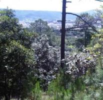 Foto de terreno habitacional en venta en predio rústico san juan bautista vilchis,, vista hermosa, san cristóbal de las casas, chiapas, 413792 no 01
