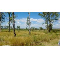 Foto de terreno industrial en venta en  , primero de mayo infonavit, irapuato, guanajuato, 2273801 No. 02