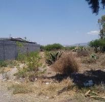 Foto de terreno habitacional en venta en principal 145, centro, actopan, hidalgo, 0 No. 03