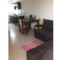 Foto de departamento en renta en privada bruneto 327, ojo de agua, tecámac, méxico, 2457692 No. 02