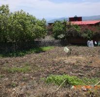 Foto de terreno habitacional en venta en privada vista alegre , lomas de cuernavaca, temixco, morelos, 790621 No. 01