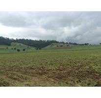 Foto de terreno habitacional en venta en pueblo nuevo 0, amanalco de becerra, amanalco, méxico, 2125766 No. 01