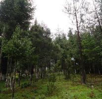 Foto de terreno habitacional en venta en  , pueblo nuevo, mineral del monte, hidalgo, 3407829 No. 01