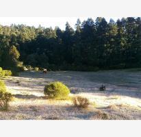 Foto de terreno habitacional en venta en  , pueblo nuevo, mineral del monte, hidalgo, 3630153 No. 01