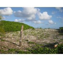Foto de terreno habitacional en venta en  , puerto morelos, benito juárez, quintana roo, 1048917 No. 01
