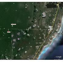 Foto de terreno habitacional en venta en, puerto arturo, josé maría morelos, quintana roo, 1138945 no 01