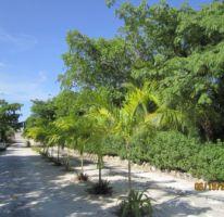 Foto de terreno habitacional en venta en, puerto morelos, benito juárez, quintana roo, 1165111 no 01