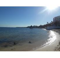 Foto de terreno habitacional en venta en  , puerto morelos, benito juárez, quintana roo, 2452278 No. 01