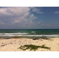 Foto de terreno habitacional en venta en  , puerto morelos, benito juárez, quintana roo, 2622077 No. 01